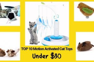 10 motion activated cat toys