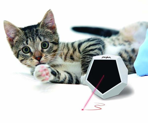 Playdot! Cat Laser Toy for motion