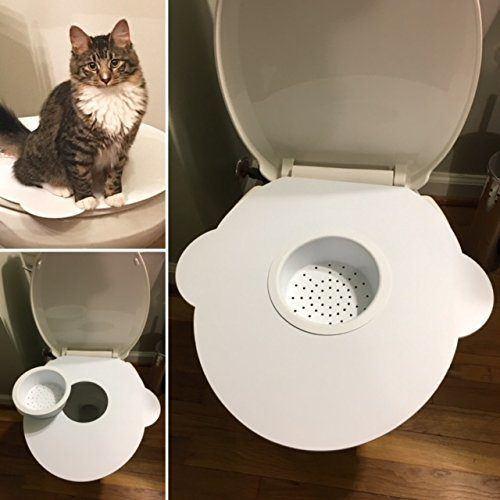 Kitty's Loo Cat Toilet Training Kit Review