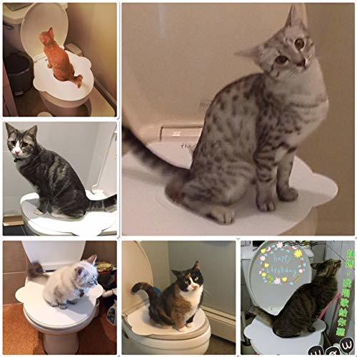 Kitty's Loo Training Seat Review