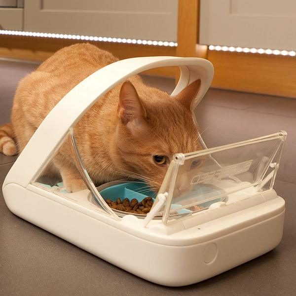 SureFeed Microchip Pet Feeder Positive