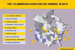 top 10 cat cities infographic